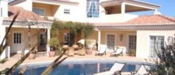 Exterior pool and garden